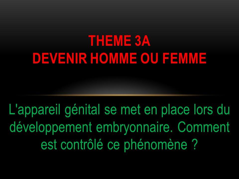 Cest la présence ou labsence du chromosome Y qui détermine la différenciation sexuelle.