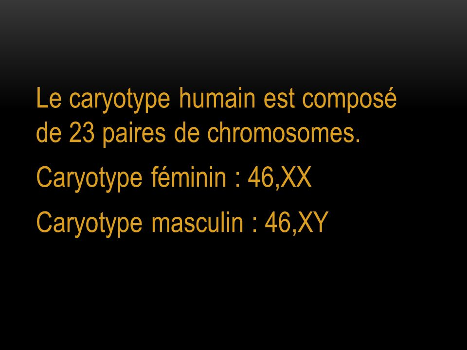 Le caryotype humain est composé de 23 paires de chromosomes. Caryotype féminin : 46,XX Caryotype masculin : 46,XY