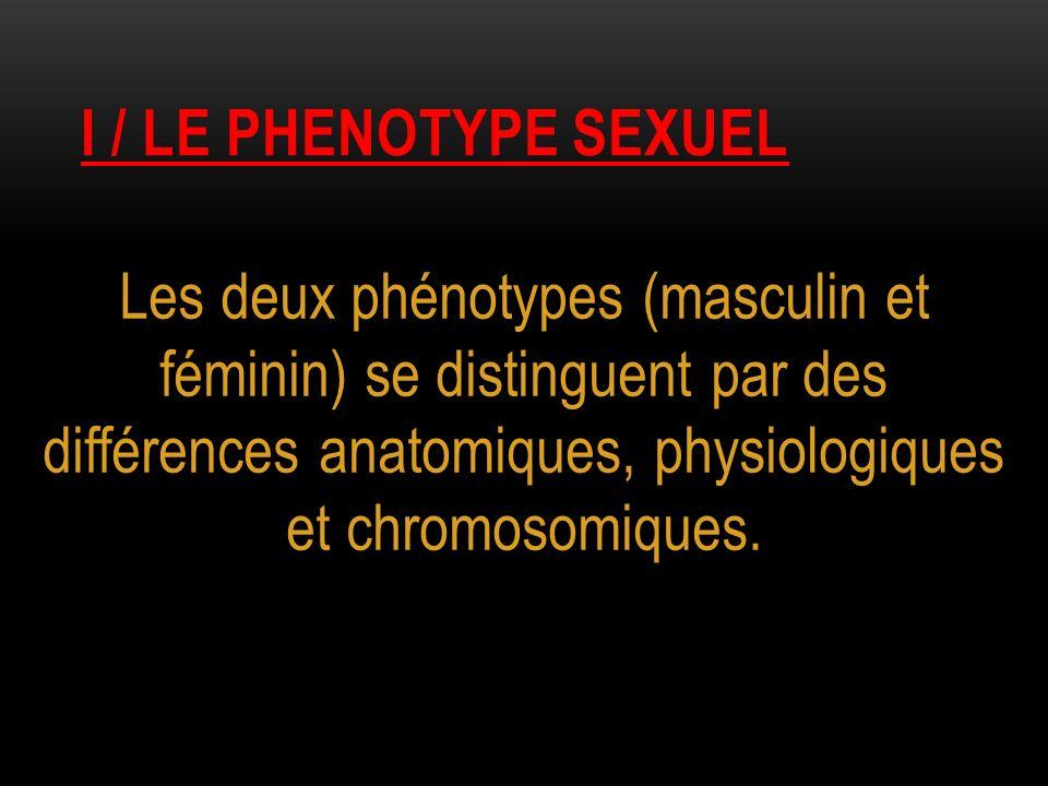 I / LE PHENOTYPE SEXUEL Les deux phénotypes (masculin et féminin) se distinguent par des différences anatomiques, physiologiques et chromosomiques.