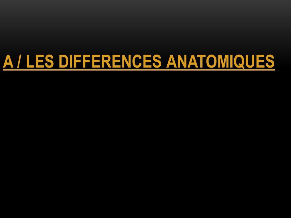 LA DIFFERENCIATION SEXUELLE (FEMME) Cellule-œuf 46,XX Absence de SRY + activation de gènes féminisant (WNT4, RSPO1) Différenciation des ovaires Absence dAMH Absence de testostérone Différenciation des canaux de Müller Régression des canaux de Wolff Appareil génital féminin Œstrogènes Ovulation