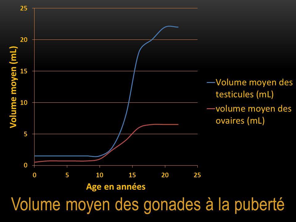 Volume moyen des gonades à la puberté