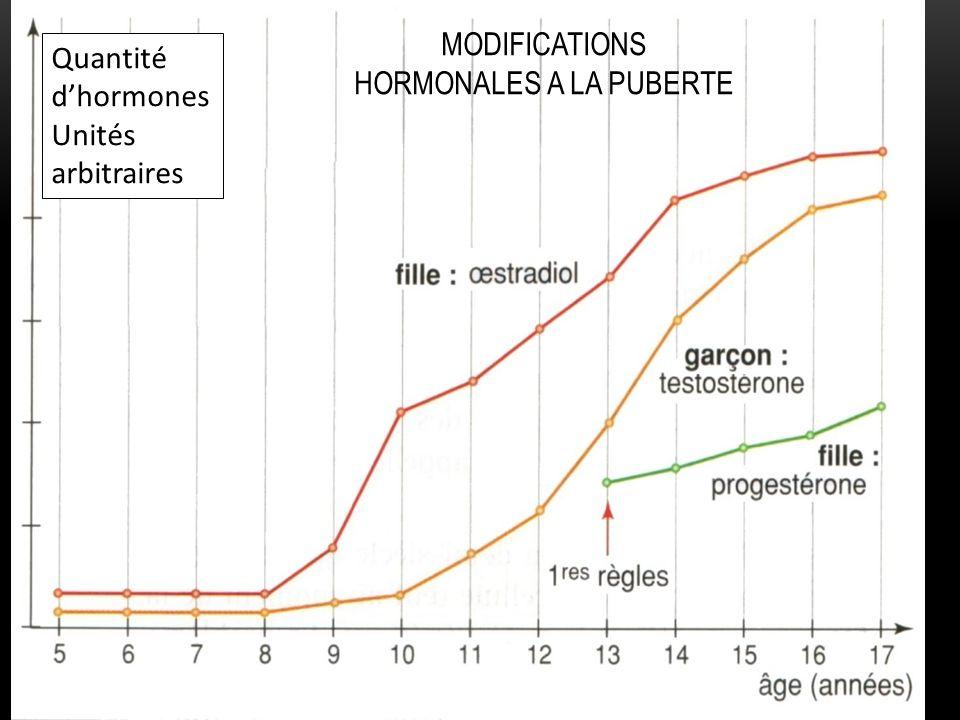 MODIFICATIONS HORMONALES A LA PUBERTE Quantité dhormones Unités arbitraires