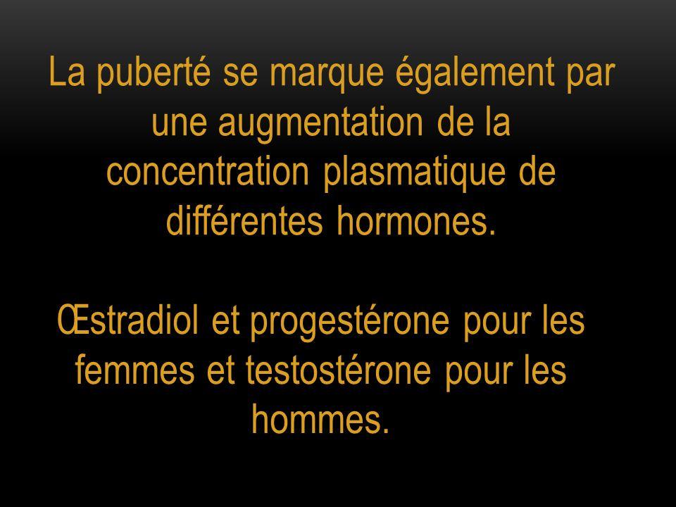 La puberté se marque également par une augmentation de la concentration plasmatique de différentes hormones. Œstradiol et progestérone pour les femmes