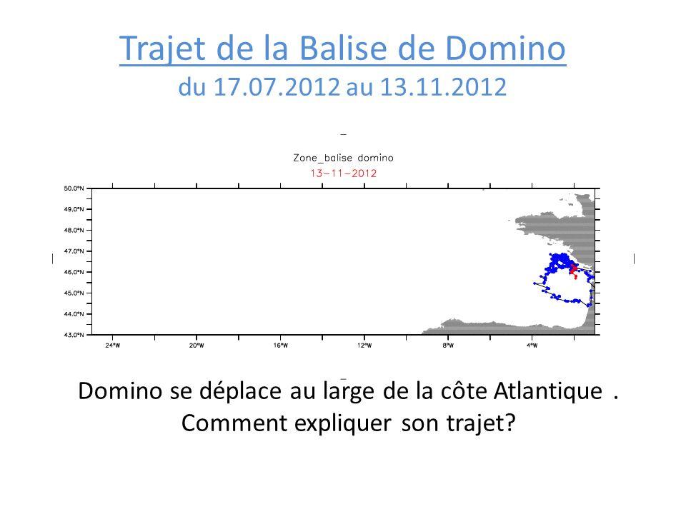 Trajet de la Balise de Domino du 17.07.2012 au 13.11.2012 Domino se déplace au large de la côte Atlantique. Comment expliquer son trajet?