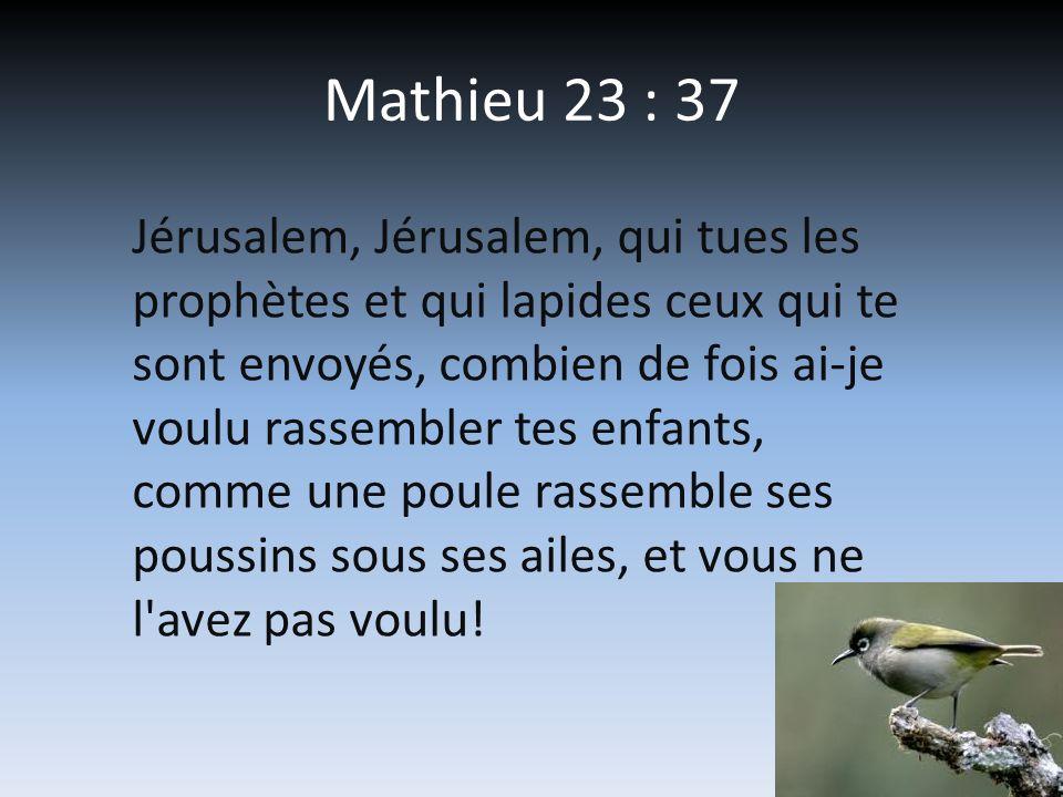 Mathieu 23 : 37 Jérusalem, Jérusalem, qui tues les prophètes et qui lapides ceux qui te sont envoyés, combien de fois ai-je voulu rassembler tes enfan