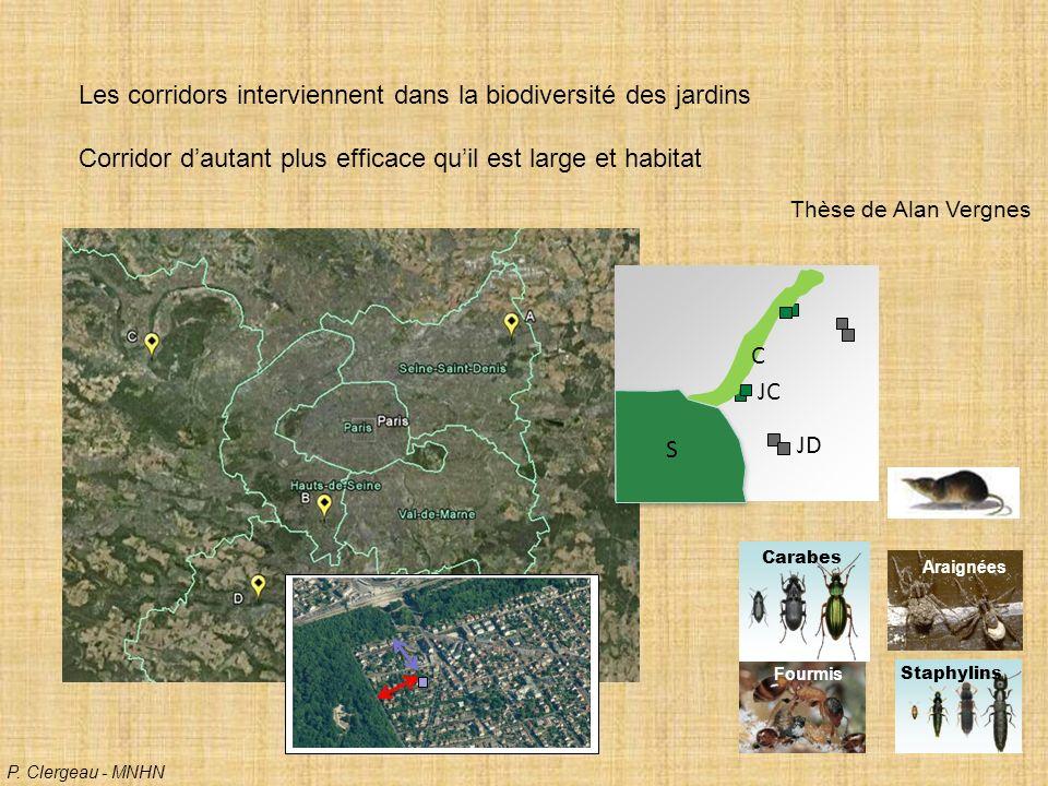 Les corridors interviennent dans la biodiversité des jardins Corridor dautant plus efficace quil est large et habitat Thèse de Alan Vergnes S C JC JD Carabes Fourmis Staphylins Araignées P.