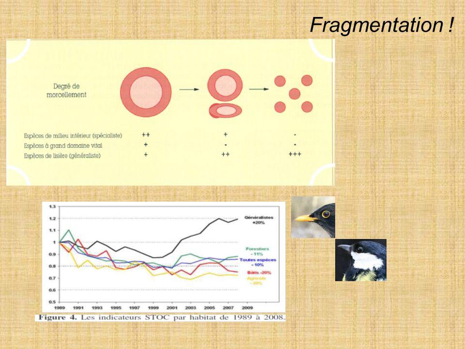 3) Mouvements des organismes Liés à la fragmentation des habitats à la taille et léloignements des éléments Connectivité structurelle vs fonctionnelle d un paysage habitat-généraliste / habitat-spécialiste Théorie des îles (1963) Concept de métapopulation
