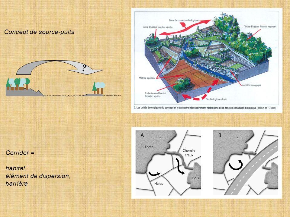 Concept de source-puits ? Corridor = habitat, élément de dispersion, barrière