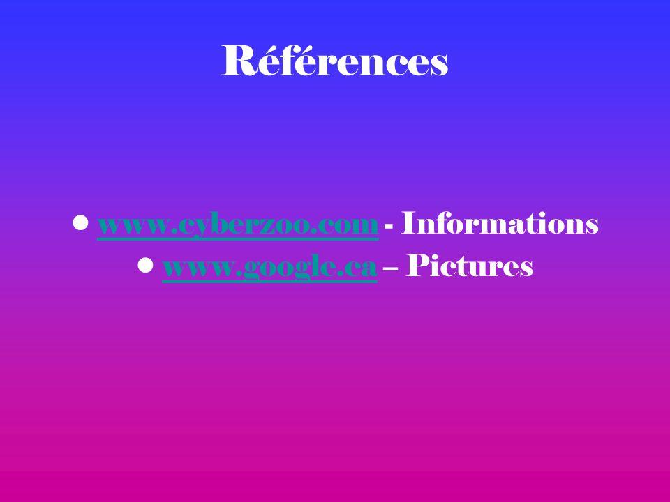 Références www.cyberzoo.com - Informationswww.cyberzoo.com www.google.ca – Pictureswww.google.ca
