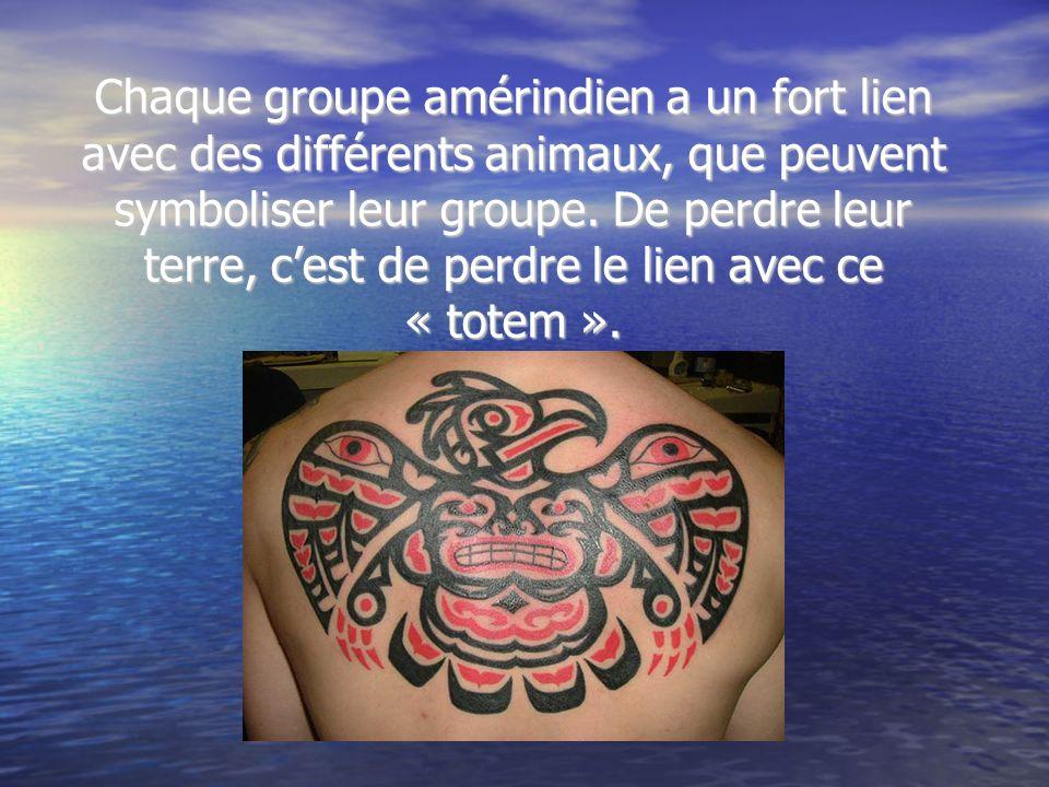 Chaque groupe amérindien a un fort lien avec des différents animaux, que peuvent symboliser leur groupe. De perdre leur terre, cest de perdre le lien