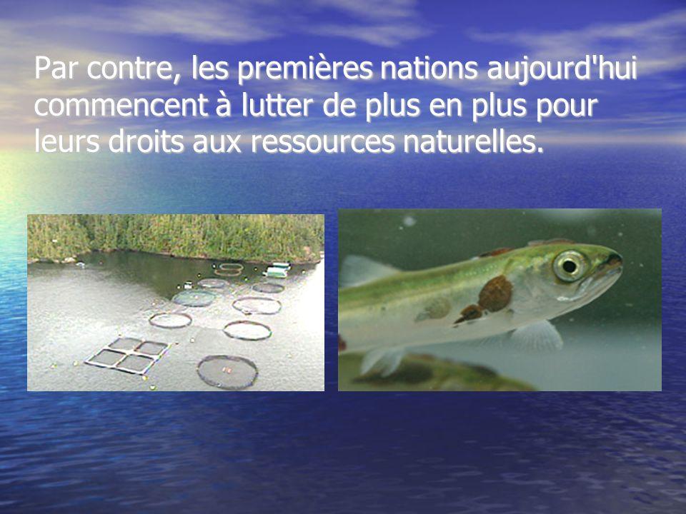 Par contre, les premières nations aujourd'hui commencent à lutter de plus en plus pour leurs droits aux ressources naturelles.