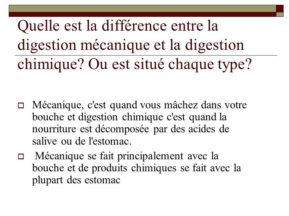 Quelle est la différence entre la digestion mécanique et la digestion chimique.