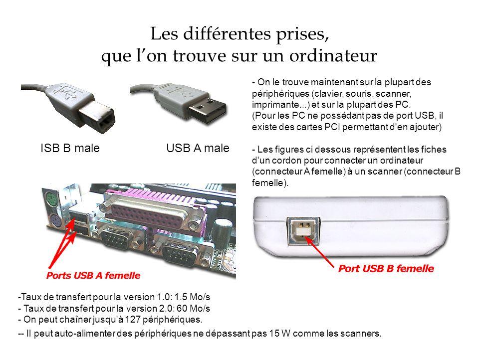Les différentes prises, que lon trouve sur un ordinateur ISB B male USB A male - On le trouve maintenant sur la plupart des périphériques (clavier, so