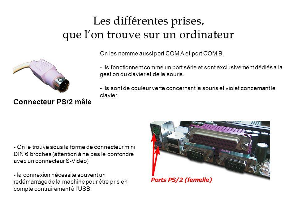Les différentes prises, que lon trouve sur un ordinateur Connecteur PS/2 mâle On les nomme aussi port COM A et port COM B. - Ils fonctionnent comme un