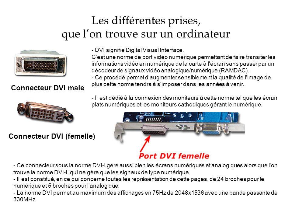 Les différentes prises, que lon trouve sur un ordinateur Connecteur DVI male - DVI signifie Digital Visual Interface. C'est une norme de port vidéo nu