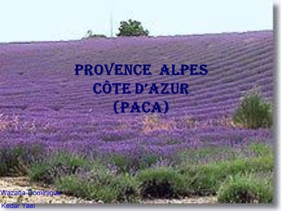 Provence Alpes Côte dAzur (PACA) Wazana Dominique Kedar Yael