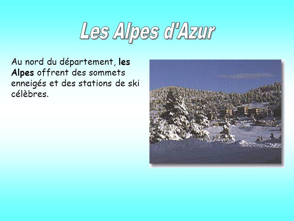 Au nord du département, les Alpes offrent des sommets enneigés et des stations de ski célèbres.