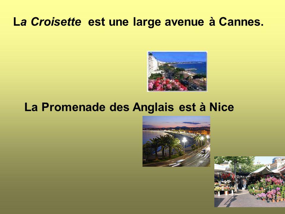 La Croisette est une large avenue à Cannes. La Promenade des Anglais est à Nice