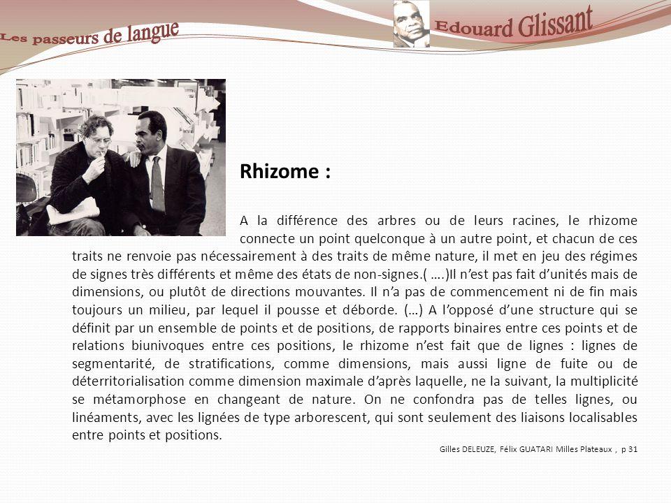 Rhizome : A la différence des arbres ou de leurs racines, le rhizome connecte un point quelconque à un autre point, et chacun de ces traits ne renvoie