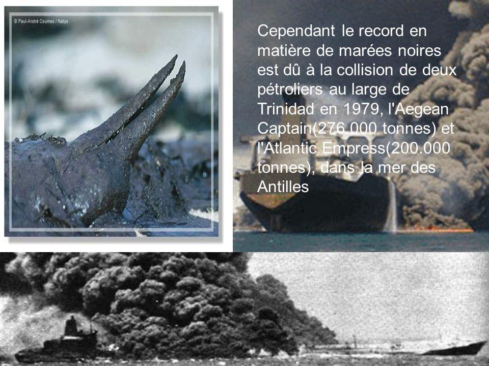 Cependant le record en matière de marées noires est dû à la collision de deux pétroliers au large de Trinidad en 1979, l'Aegean Captain(276.000 tonnes