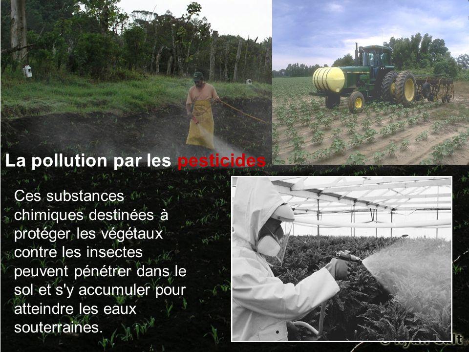 La pollution par les pesticides Ces substances chimiques destinées à protéger les végétaux contre les insectes peuvent pénétrer dans le sol et s'y acc