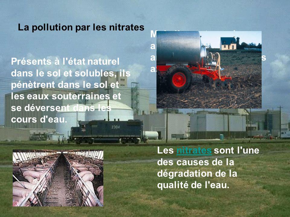 La pollution par les nitrates Présents à l'état naturel dans le sol et solubles, ils pénètrent dans le sol et les eaux souterraines et se déversent da