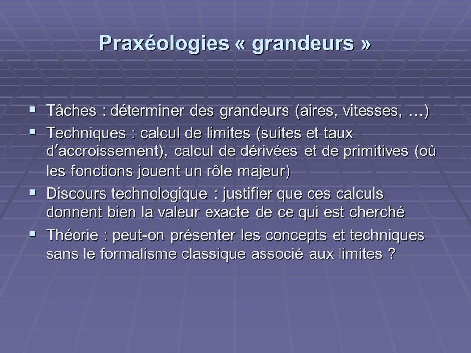 Praxéologies « grandeurs » Tâches : déterminer des grandeurs (aires, vitesses, …) Tâches : déterminer des grandeurs (aires, vitesses, …) Techniques :