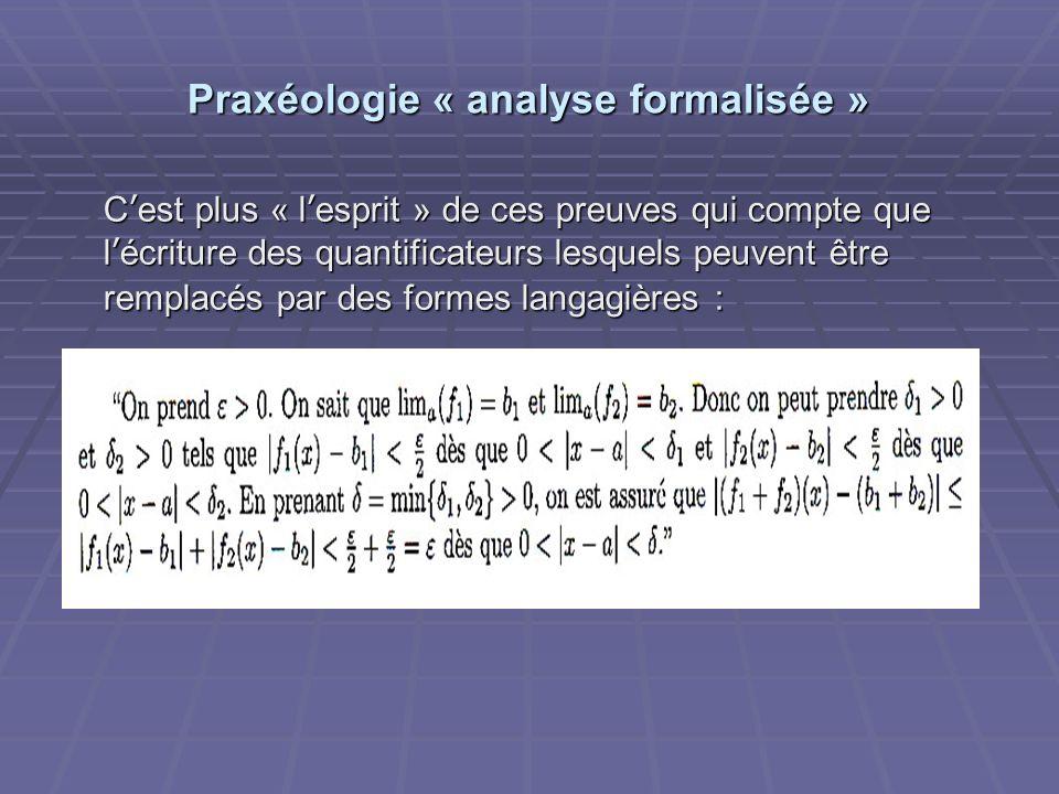 Praxéologie « analyse formalisée » Cest plus « lesprit » de ces preuves qui compte que lécriture des quantificateurs lesquels peuvent être remplacés p