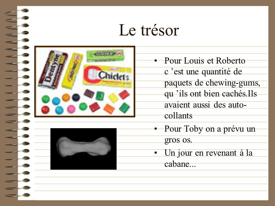 Le trésor Pour Louis et Roberto c est une quantité de paquets de chewing-gums, qu ils ont bien cachés.Ils avaient aussi des auto- collants Pour Toby on a prévu un gros os.