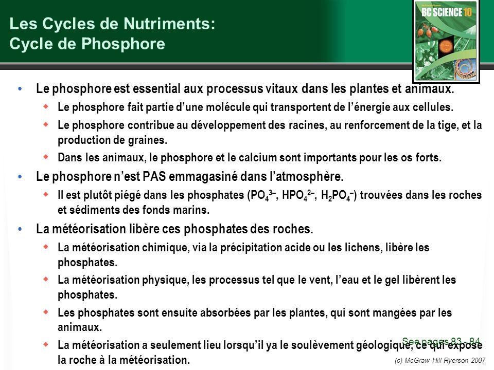 (c) McGraw Hill Ryerson 2007 Les Cycles de Nutriments: Cycle de Phosphore Le phosphore est essential aux processus vitaux dans les plantes et animaux.