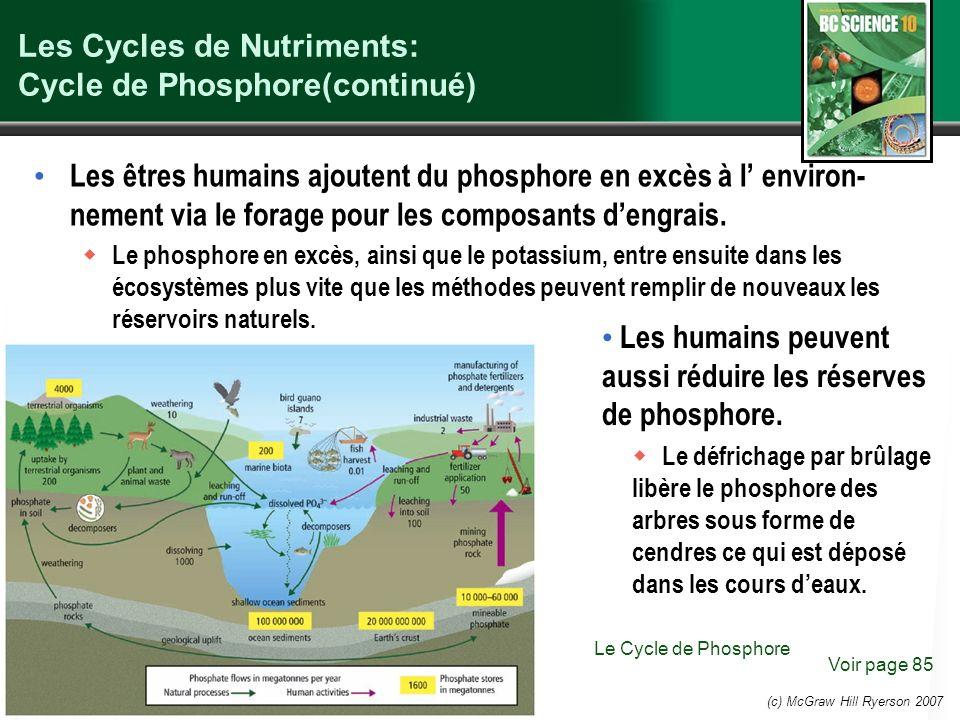 (c) McGraw Hill Ryerson 2007 Les Cycles de Nutriments: Cycle de Phosphore(continué) Les êtres humains ajoutent du phosphore en excès à l environ- nement via le forage pour les composants dengrais.