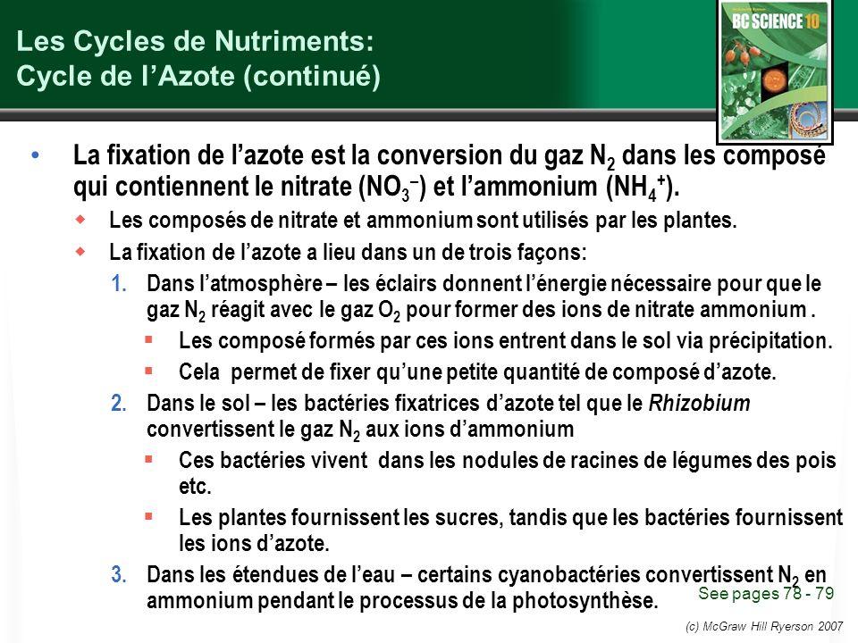 (c) McGraw Hill Ryerson 2007 Les Cycles de Nutriments: Cycle de lAzote (continué) La fixation de lazote est la conversion du gaz N 2 dans les composé qui contiennent le nitrate (NO 3 – ) et lammonium (NH 4 + ).