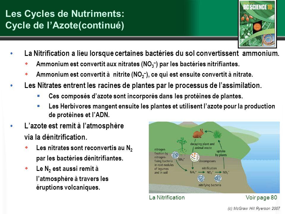 (c) McGraw Hill Ryerson 2007 Les Cycles de Nutriments: Cycle de lAzote(continué) La Nitrification a lieu lorsque certaines bactéries du sol convertissent ammonium.