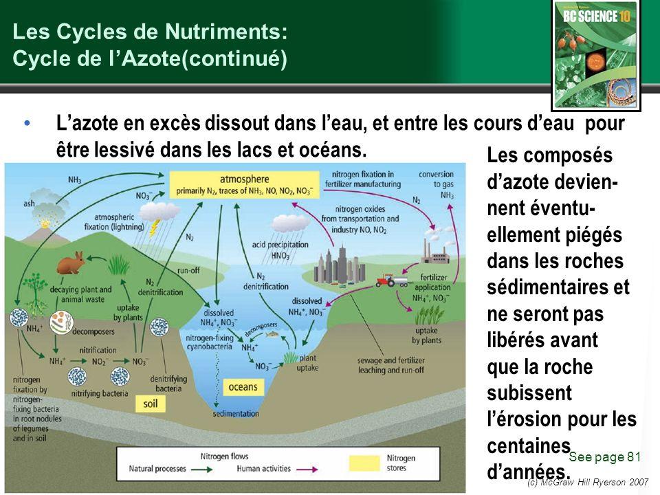 (c) McGraw Hill Ryerson 2007 Les Cycles de Nutriments: Cycle de lAzote(continué) See page 81 Lazote en excès dissout dans leau, et entre les cours deau pour être lessivé dans les lacs et océans.