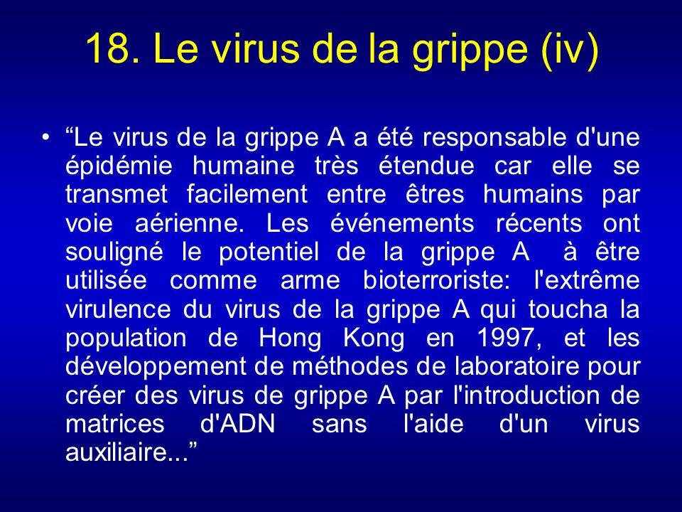 18. Le virus de la grippe (iv) Le virus de la grippe A a été responsable d'une épidémie humaine très étendue car elle se transmet facilement entre êtr