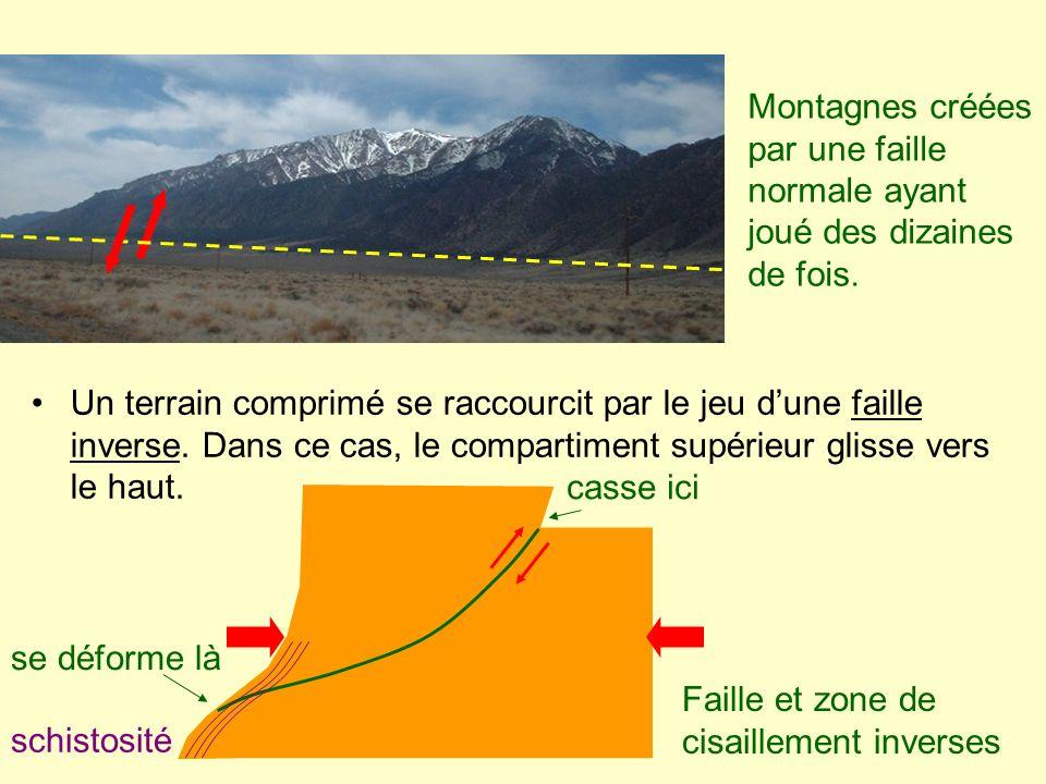 Un terrain comprimé se raccourcit par le jeu dune faille inverse. Dans ce cas, le compartiment supérieur glisse vers le haut. schistosité Faille et zo
