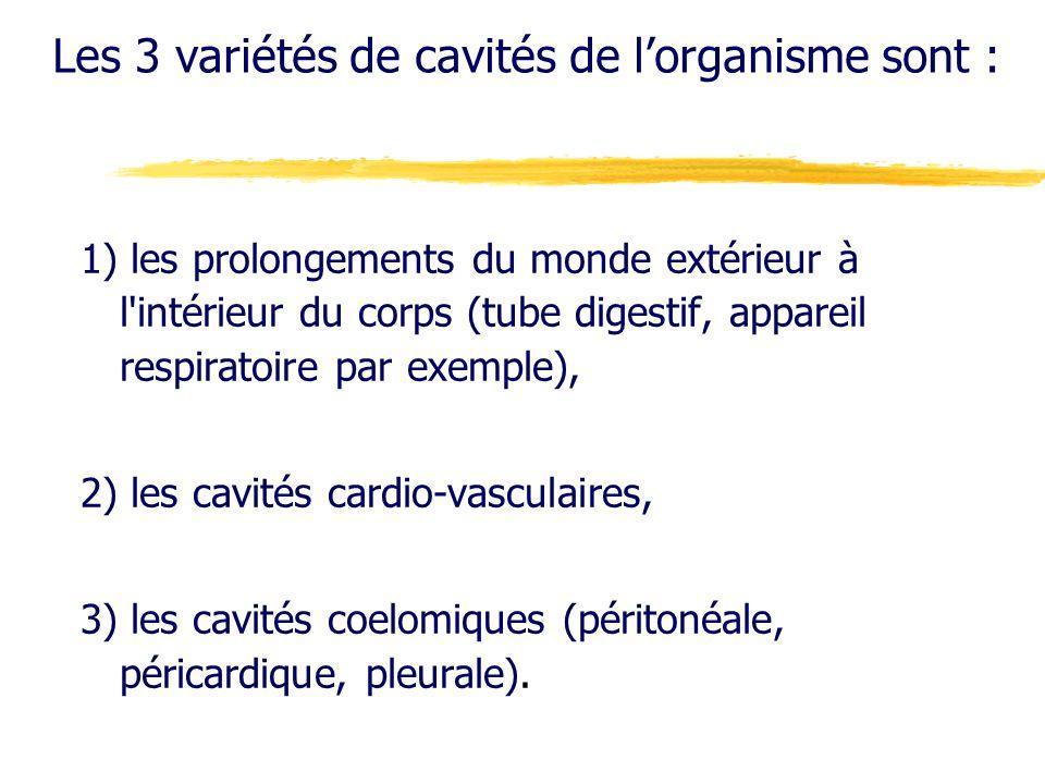 Les 3 variétés de cavités de lorganisme sont : 1) les prolongements du monde extérieur à l'intérieur du corps (tube digestif, appareil respiratoire pa