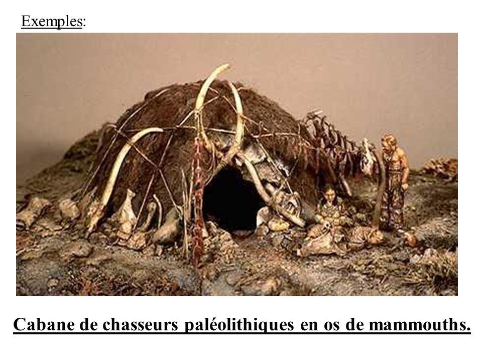 Exemples: Cabane de chasseurs paléolithiques en os de mammouths.