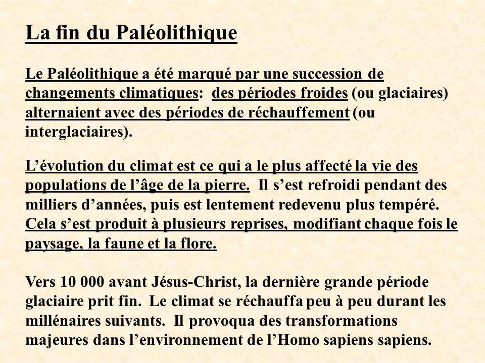 La fin du Paléolithique Le Paléolithique a été marqué par une succession de changements climatiques: des périodes froides (ou glaciaires) alternaient