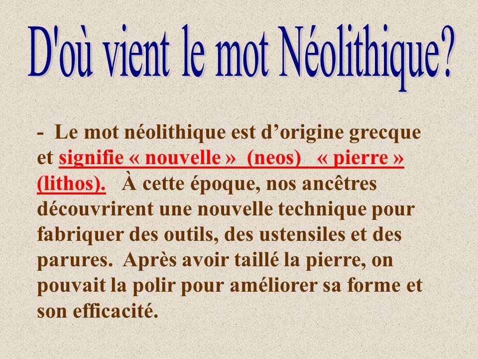 - Le mot néolithique est dorigine grecque et signifie « nouvelle » (neos) « pierre » (lithos). À cette époque, nos ancêtres découvrirent une nouvelle