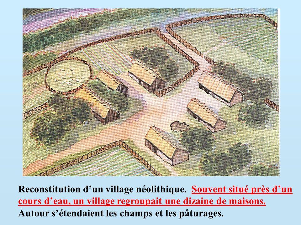 Reconstitution dun village néolithique. Souvent situé près dun cours deau, un village regroupait une dizaine de maisons. Autour sétendaient les champs
