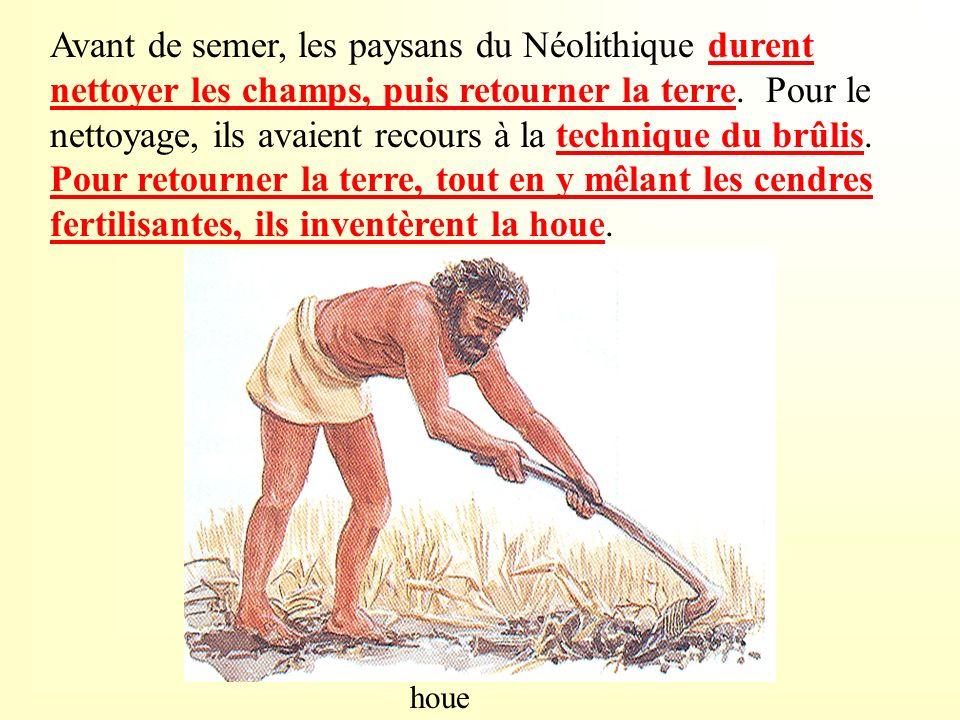 Avant de semer, les paysans du Néolithique durent nettoyer les champs, puis retourner la terre. Pour le nettoyage, ils avaient recours à la technique