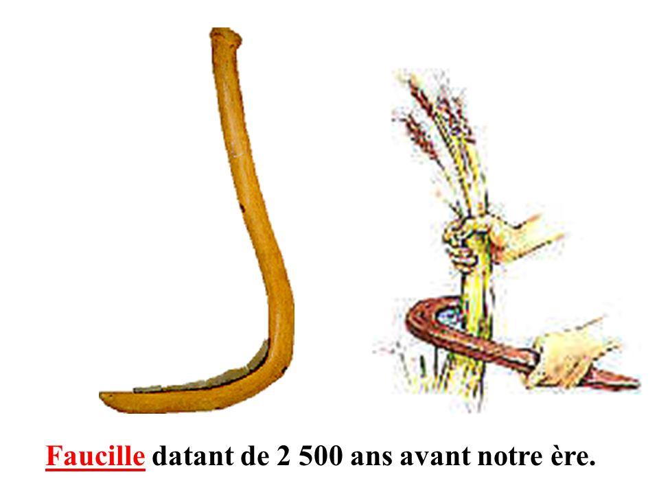Faucille datant de 2 500 ans avant notre ère.