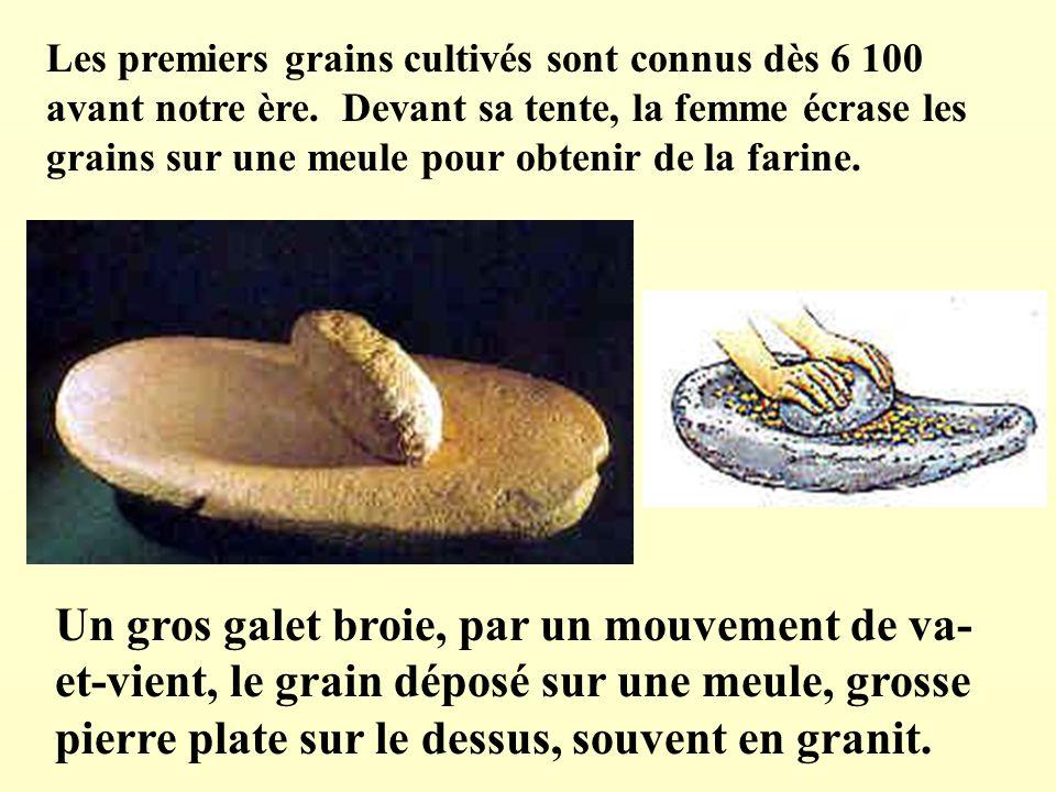 Les premiers grains cultivés sont connus dès 6 100 avant notre ère. Devant sa tente, la femme écrase les grains sur une meule pour obtenir de la farin