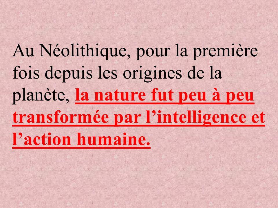 Au Néolithique, pour la première fois depuis les origines de la planète, la nature fut peu à peu transformée par lintelligence et laction humaine.