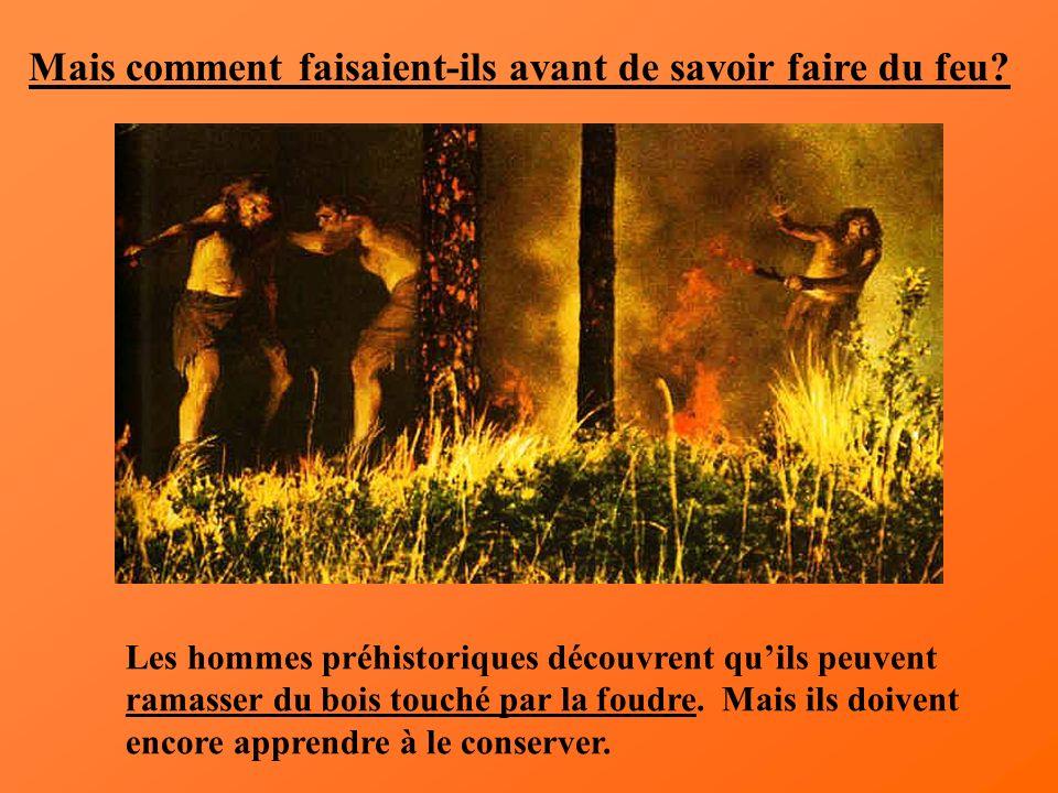 Mais comment faisaient-ils avant de savoir faire du feu? Les hommes préhistoriques découvrent quils peuvent ramasser du bois touché par la foudre. Mai
