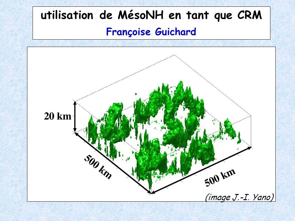 utilisation de MésoNH en tant que CRM Françoise Guichard (image J.-I. Yano)
