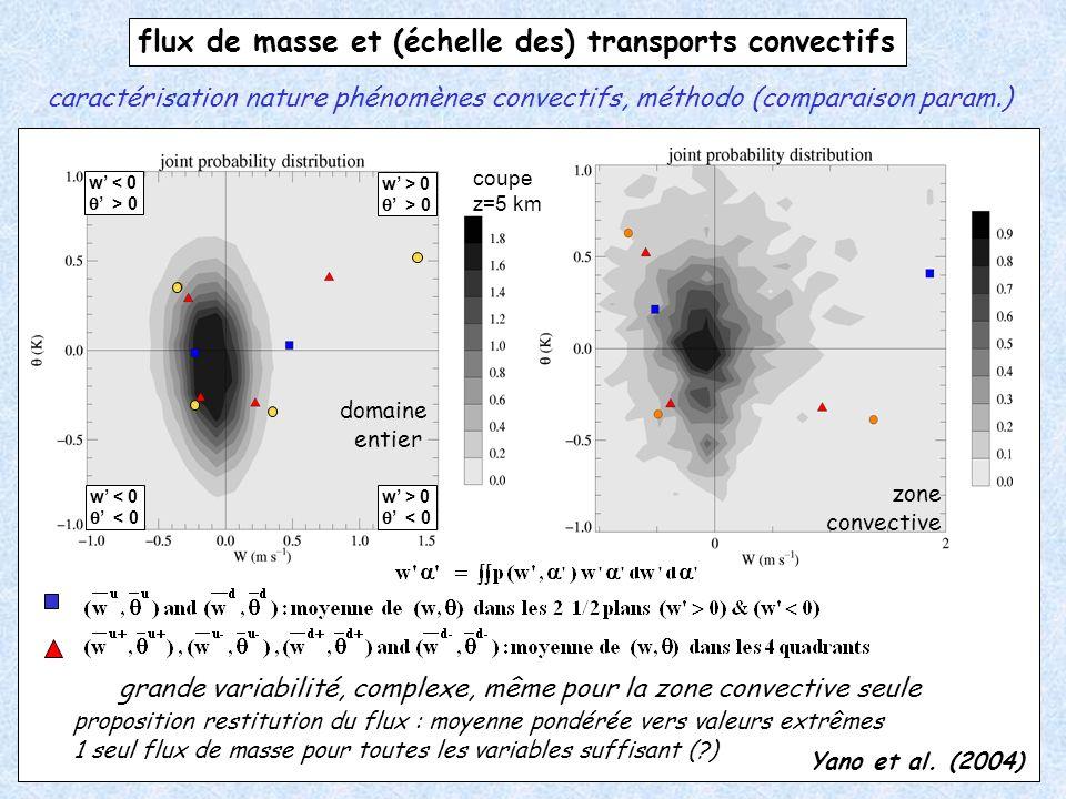 w < 0 > 0 w < 0 < 0 w > 0 > 0 w > 0 < 0 flux de masse et (échelle des) transports convectifs coupe z=5 km proposition restitution du flux : moyenne po