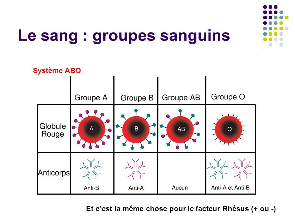 Le sang : groupes sanguins Système ABO Et cest la même chose pour le facteur Rhésus (+ ou -)