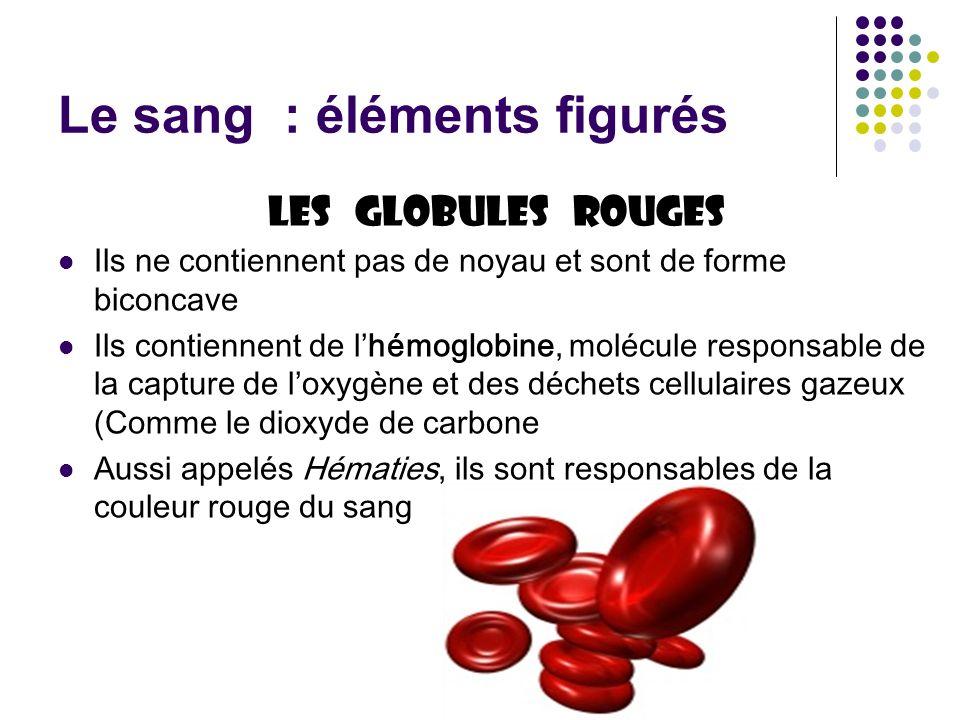 Le sang : éléments figurés Les globules rouges Ils ne contiennent pas de noyau et sont de forme biconcave Ils contiennent de lhémoglobine, molécule re